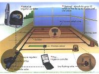 irrigation-10.jpg