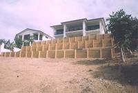 timber-wall-11.jpg
